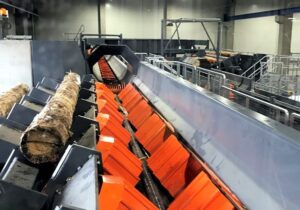 Gelo Timber starts production at its new sawmill in Wunsiedel, Germany